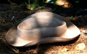 Lost Hat by xephon45