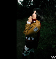 Mikasa Ackerman - the last firstborn by Mizukishou