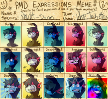 pmd-e expression meme by WindFlite