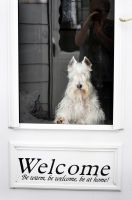 welcome by Speacial-J-Cerial