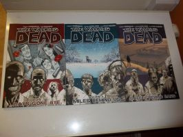 The Walking Dead Comic Book vol 1-3 by extraphotos