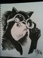 Sketchbook Catwoman by SixGunslinger