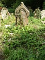 Southampton Old Cemetery 30 by OghamMoon