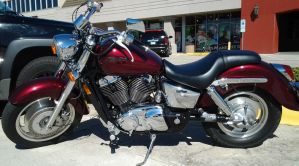 honda shadow by drakewl75