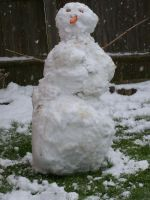 The Snowman of Doom by JJWcool