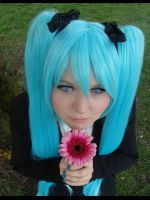 Miku Hatsune Cosplay Saihate by Moin2D