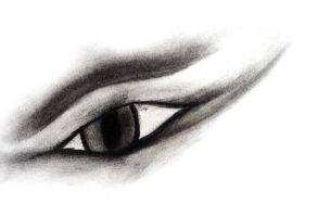 Charcoal eye by Nightfury-Treann