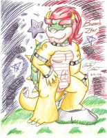 Bowser's Shinning Ztar by Bowser2Queen