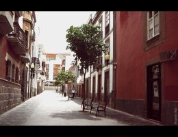 Calle by MrAlito