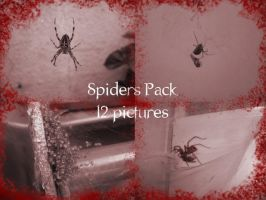 Spiders Pack by IcyStock