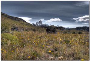 Fitz Roy IX by kiebitz