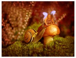 Fairy and Snail by FuzzyBuzzy