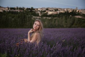 Lavender nights... by Muse1908