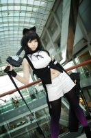STGCC'13 - Blake Belladonna by macross-n