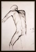 Figure drawing 6 by AustinE15