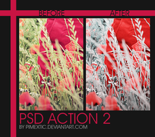 PSD Action 2 by PIMEXTIC