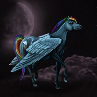 Rainbow Dash - Competition by Oxidine
