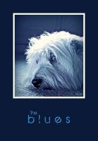Doggy blues by Marcauest