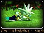 Silver The hedgehog - S rank by mathi88