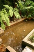 Chalice Well Garden Pool by FoxStox