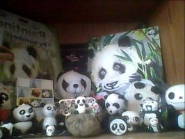 Panda Collection by Carolynzy6125andBSP