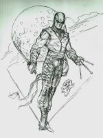 Stormshadow by Whispering-Road