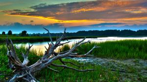 Low Country Sunset by MontgomeryKern