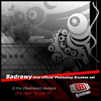 badrawy brushes set 1 by badrawy