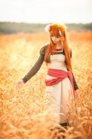 Horo In The Field 2 by Vesta777