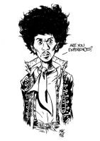are you experienced? by gianmac