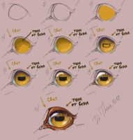 Tutorial: how to draw the eye of horse by Esa82