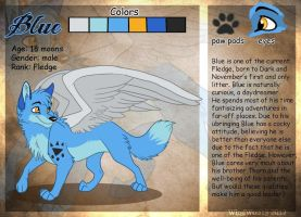 Blue Character Sheet by WindWo1f