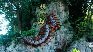 2011.10 Giant Centipede (Old Photo) by KiraAkuma92