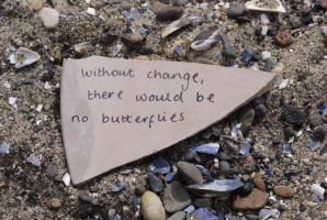 Butterflies of Change by Rhiallom