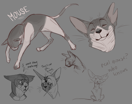 JRP - Mouse Sketch Page by Pedropoliss