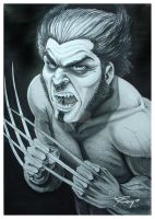 Commission - Wolverine by Drawingremy