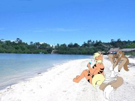 a day at the beach by BTfan
