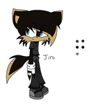Jiro the Catfox clothes colors by xChaseTheHedgehogx