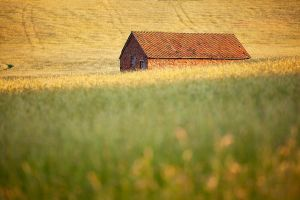 Little Barn Exmoor by Andyw01