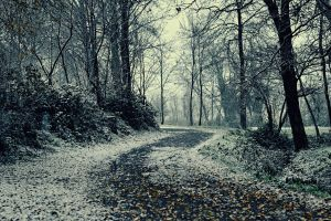 First SNOW by EnricoDilda
