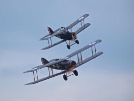 Se5 with  Bristol Fighter - Old Warden by davepphotographer