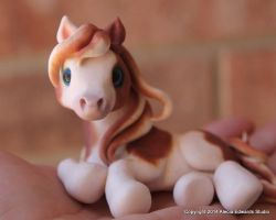 Wee Little Paint Pony by AleciaEdwards