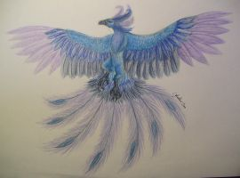 Icy Phoenix by WyvernFlames