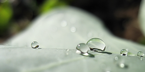TPM Blank Icon Water Droplets by OneofakindKnight