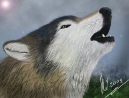 Howling Wolf by RachelWolf