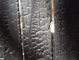 Burnt Wood2 by nitch-stock