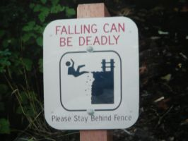 Falling can be Deadly by Track-Maidens