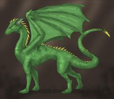 The name is dragon... by trisis