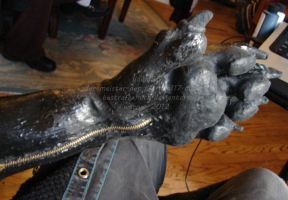 Paw Gloves Update 06.12.2012 by BestrafexMich