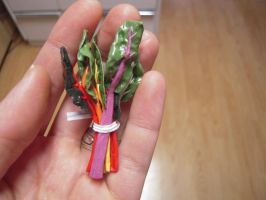 Rainbow Chard 2 by lily-inabottle